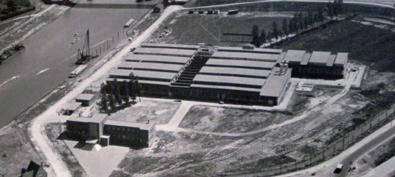 nedal factory